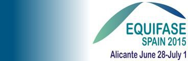 X IBEROAMERICAN CONFERENCE ON PHASE EQUILIBRIA AND FLUID PROPERTIES FOR PROCESS DESIGN. Alicante (SPAIN), 28 June - 1 July, 2015.