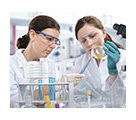 logo University Master's Degree in Medical Chemistry