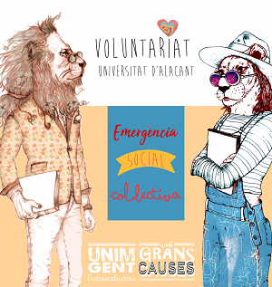 VoluntariatUA